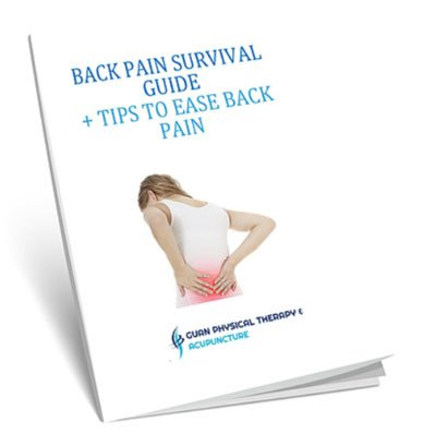 Back Pain E Book